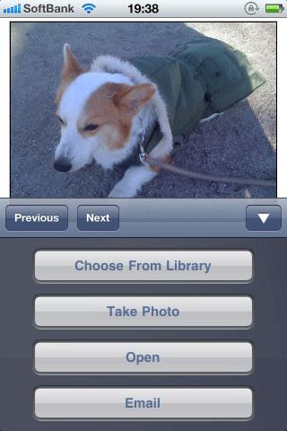 オブジェクトフィールドをタップすると、iPhoneでは4つのボタンが表示される。