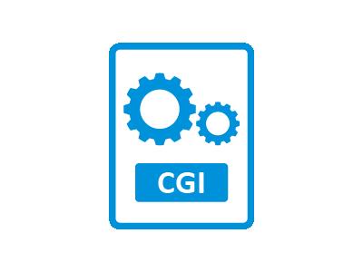CGI/SSI